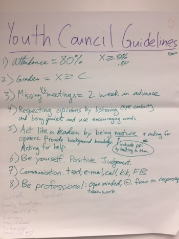 AALEAD Youth Council Guidelines